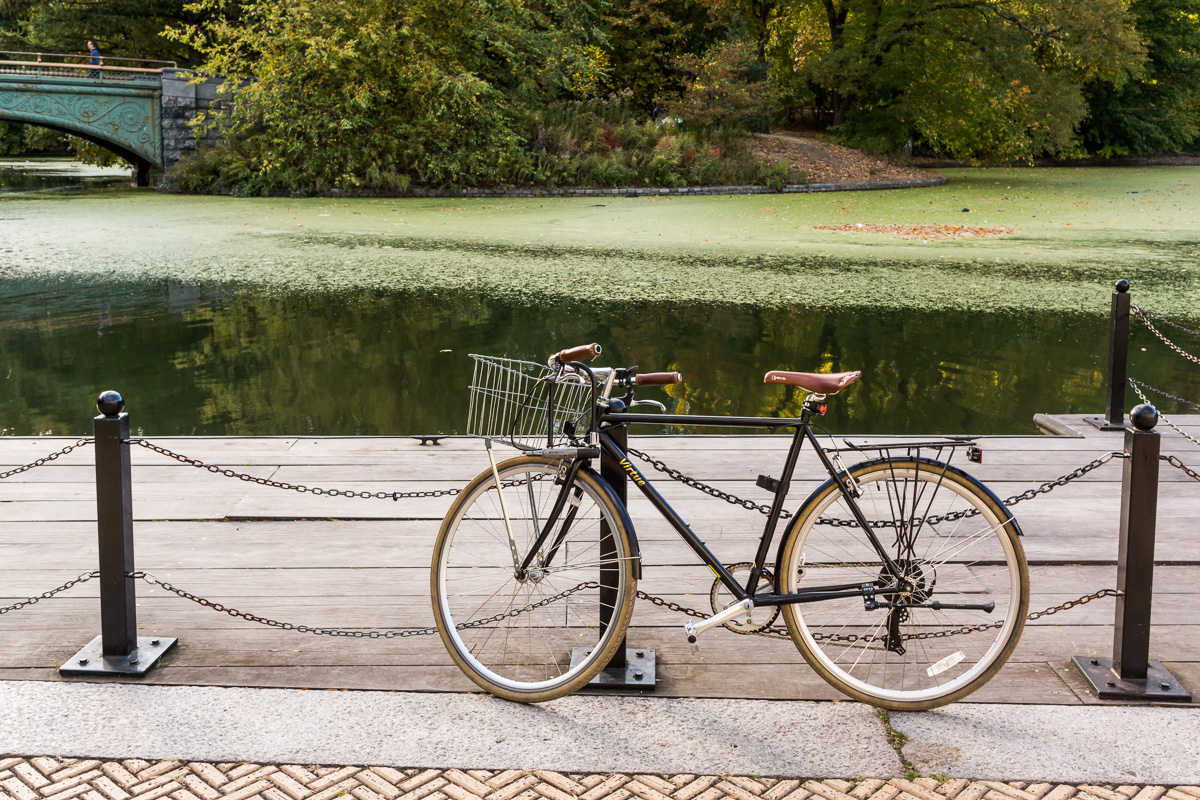 no. 6. A bicycle. A bicycle at the Prospect Park, in a summer afternoon because las bicicletas son para el verano